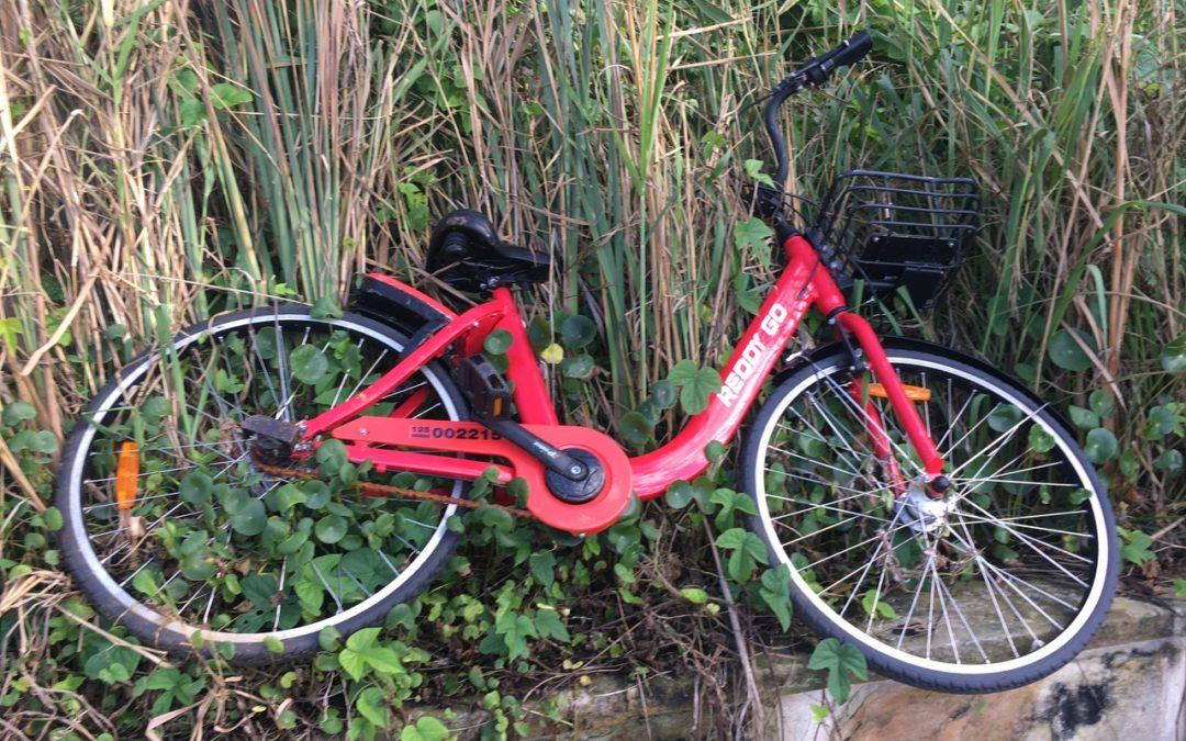 Bike Compartilhada – Coisas da Austrália