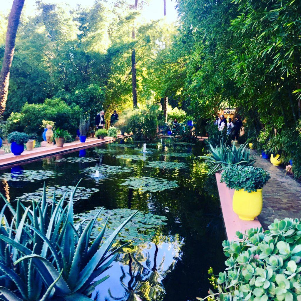 Espelho d'água no Jardim Majorelle